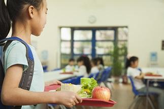Food study programs